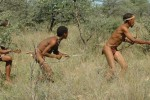 Bushmennamibia