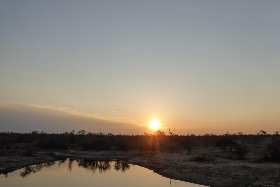 Sunset  by Regina Hart