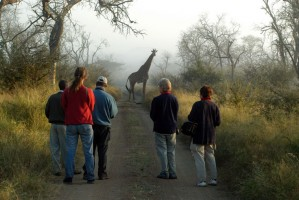 Bush walk in Swaziland