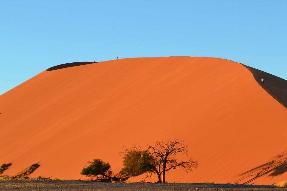 Namib Dune  by sanderlw