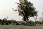 Chobe campsite