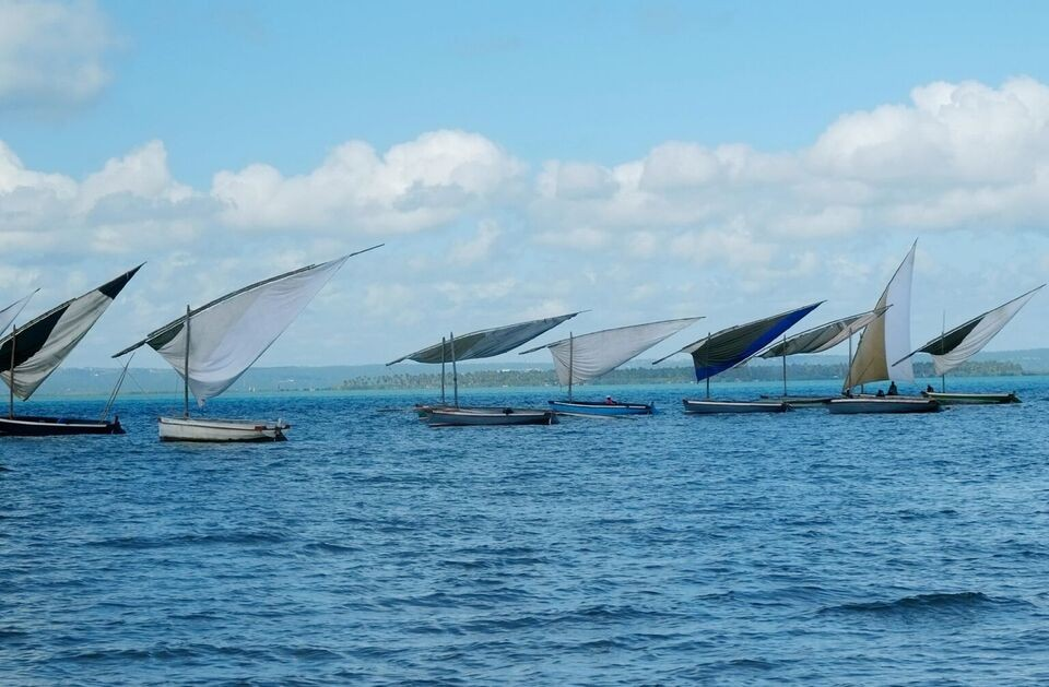Mozambique dhows