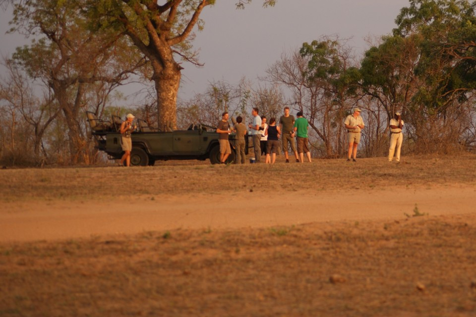 Game drive at kruger national park.gallery image.5