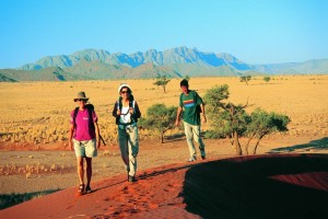Namib Desert Namibia Image