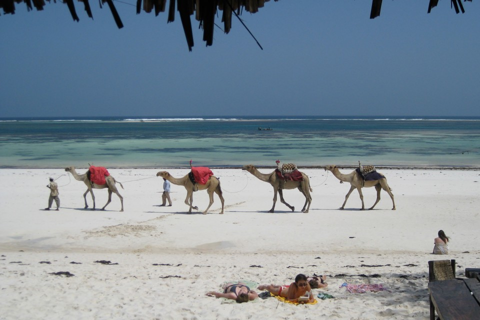 Mombasa beach  by Beverly Trayner
