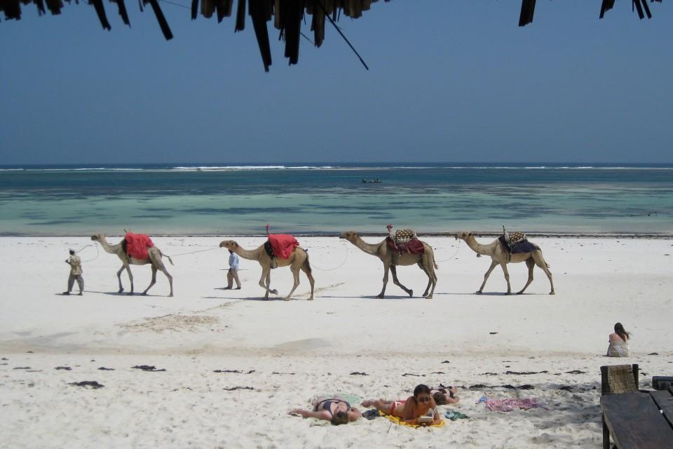 Mombasa beach  by Beverly Trayner