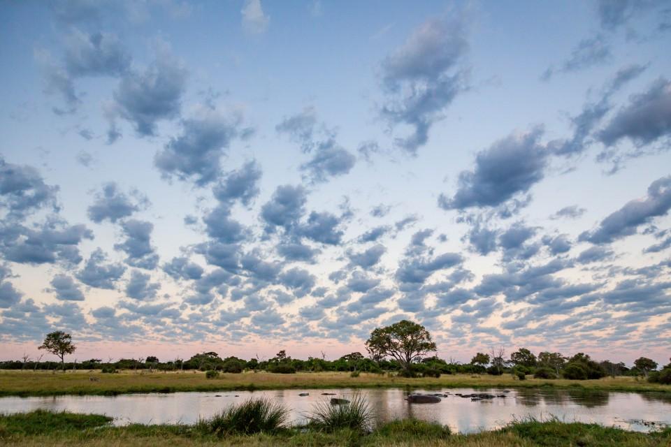 Botswana scenery