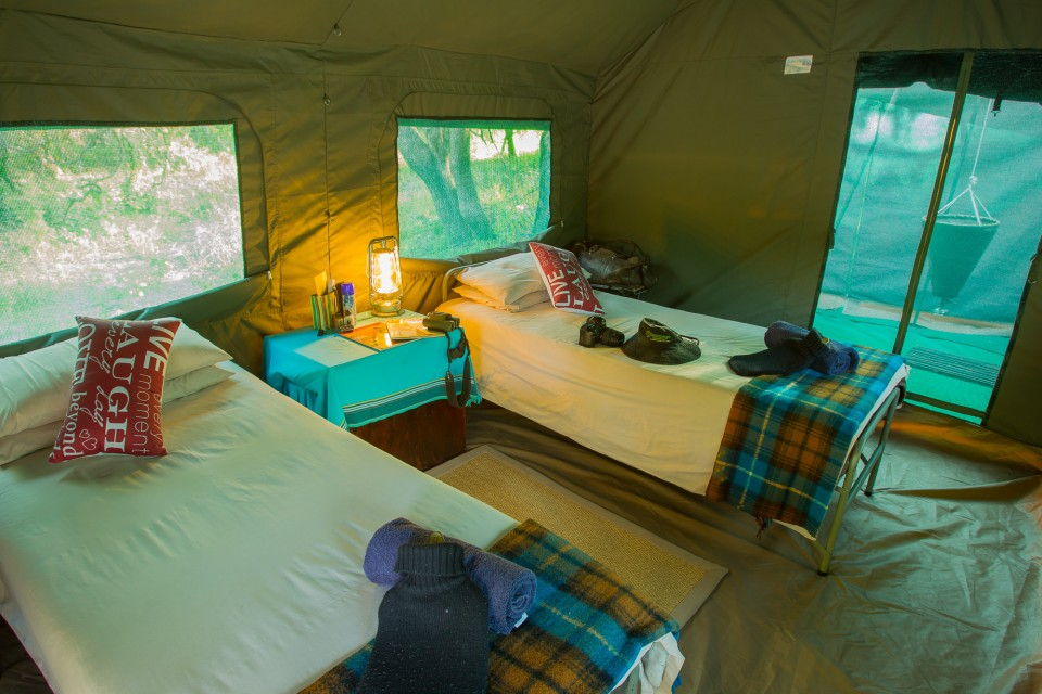 Serviced safari tent inside