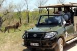 6 Day Southern Kruger Budget Lodges Safari