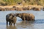 7-africa-on-foot-walking-safaris4