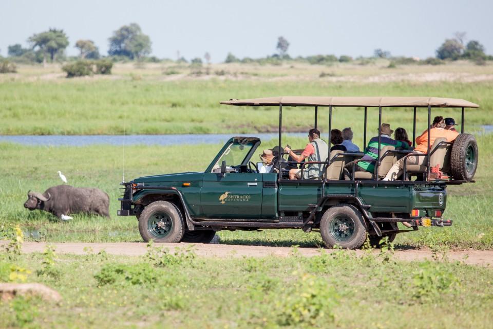 Chobe drive