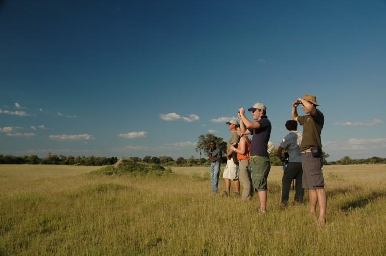 Okavango-morning-walk-