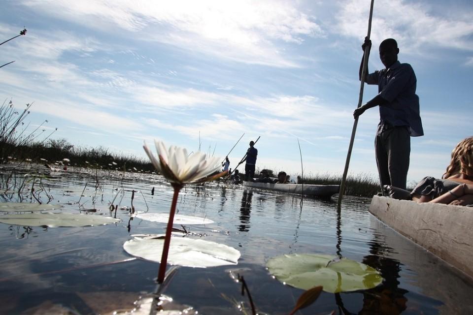 Okavango Delta mokoro poler