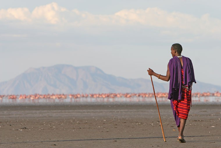 Masai and flamingoes