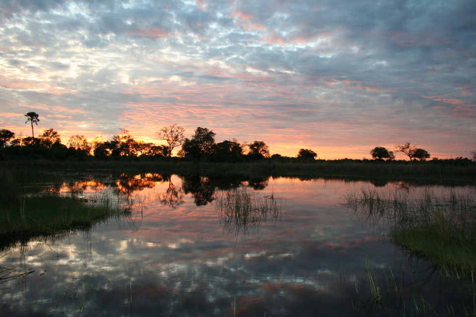 Okavango delta sunset  by Jon Rawlinson