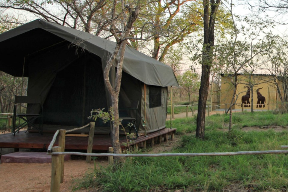 Tented eco-camp