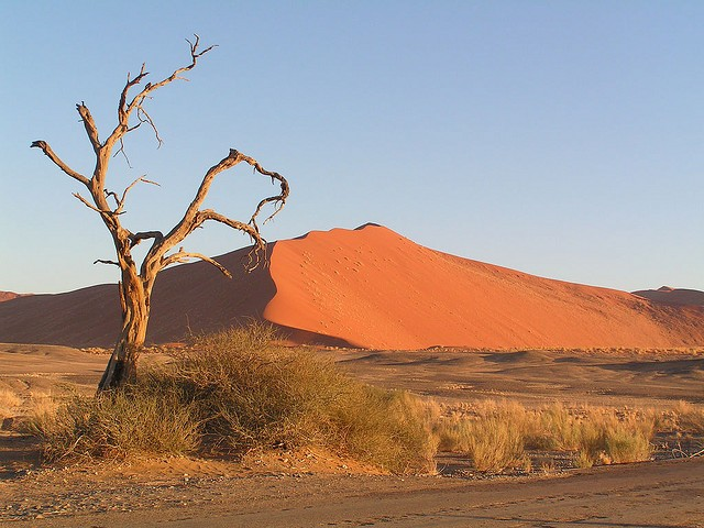 Sossusvlei  by Kevin Pluck
