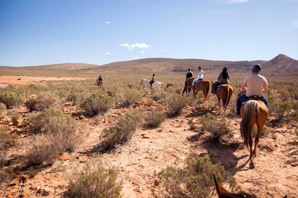Aquila horseback safari
