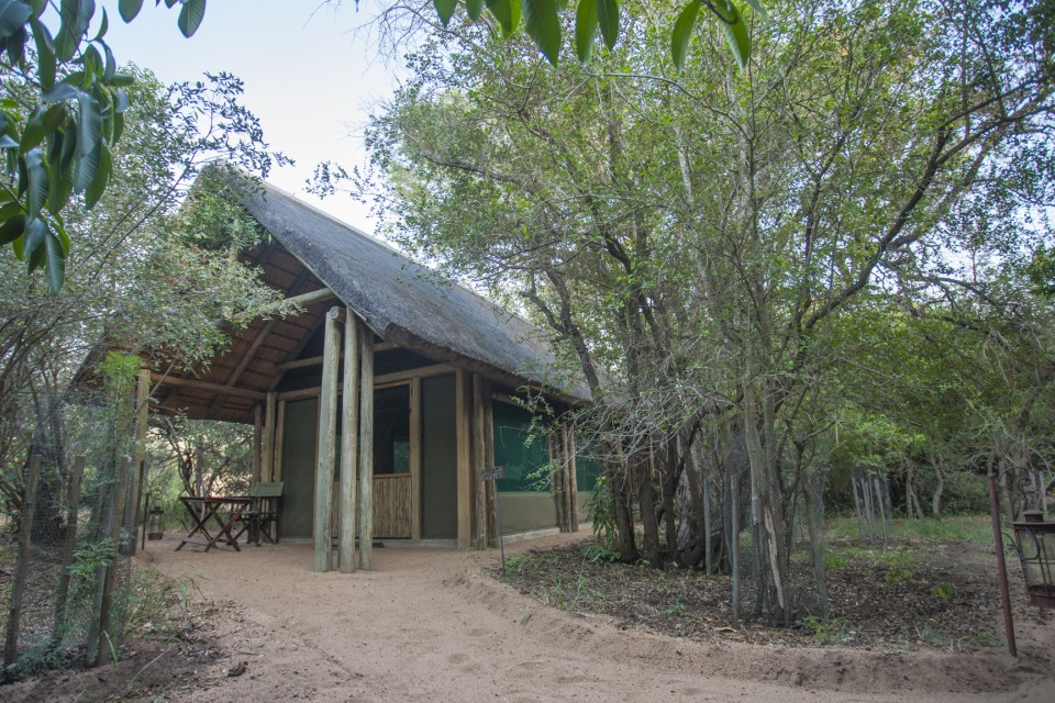 Bateleur Camp accommodation