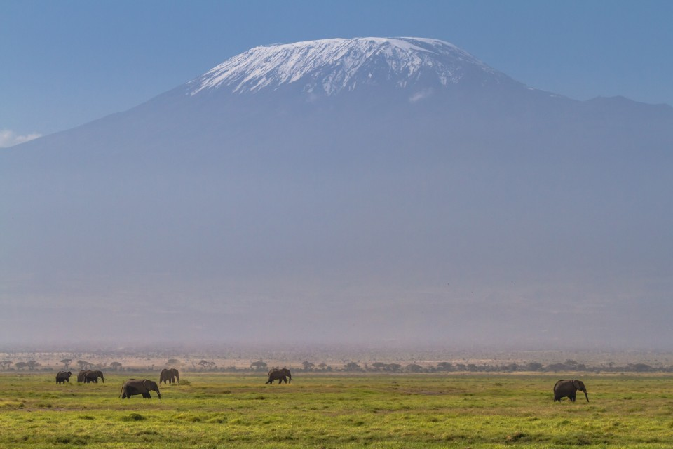 Kilimanjaro and elephants  by Benh LIEU SONG
