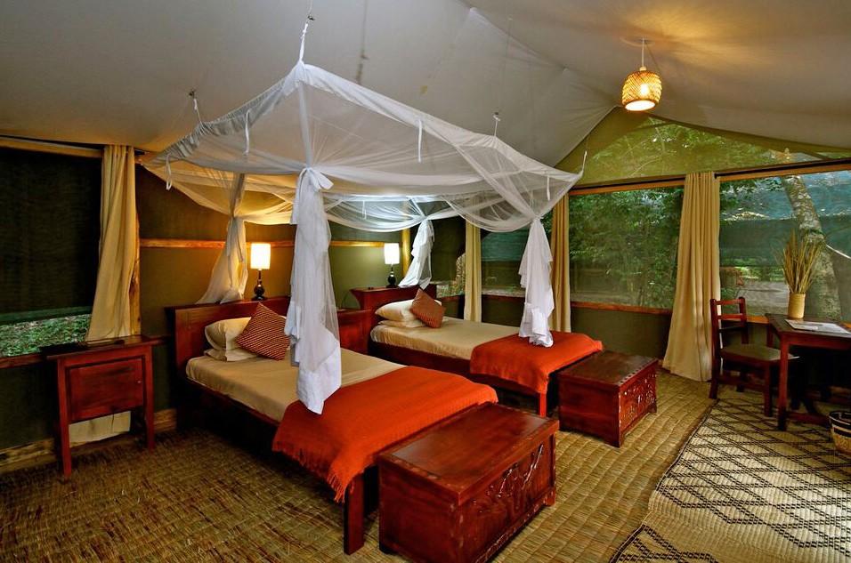 Ishasha twin room