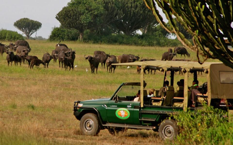 Mweya safari lodge safari drive-lo