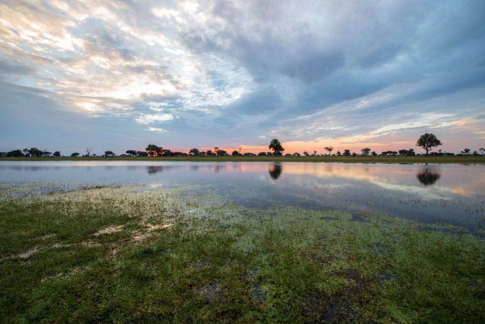 Zimbabwe hwange park