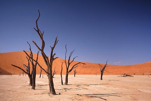 Namib Desert  by ÃÂÂÃ&Ac