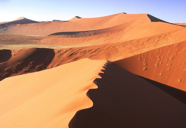 Namib Desert  by Monica Guy