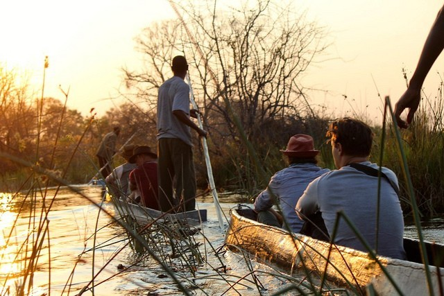 Okavango delta  by Ross Huggett