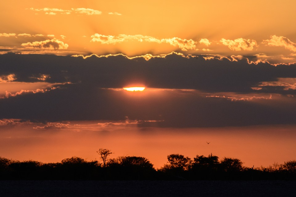 Sunset over Etosha  by dconvertini