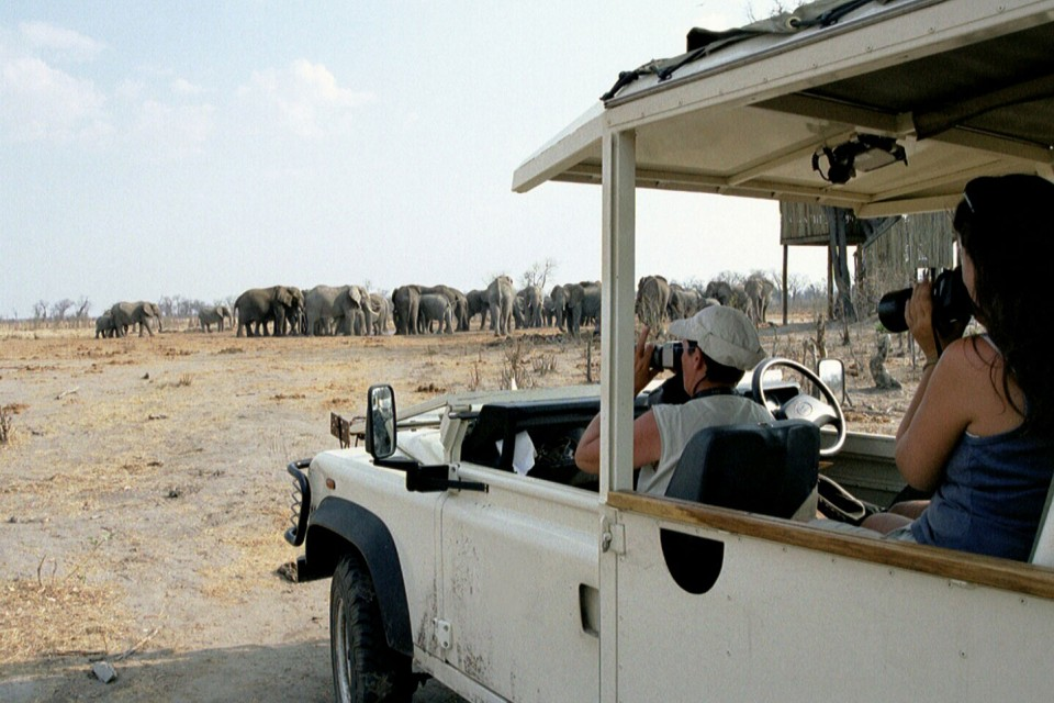 Safari vehicle at elephant waterhole