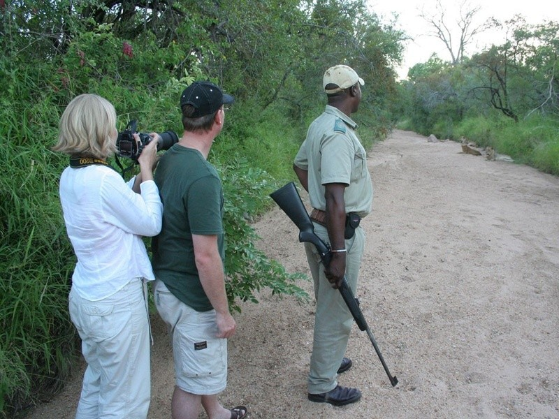 Greater Kruger game walk