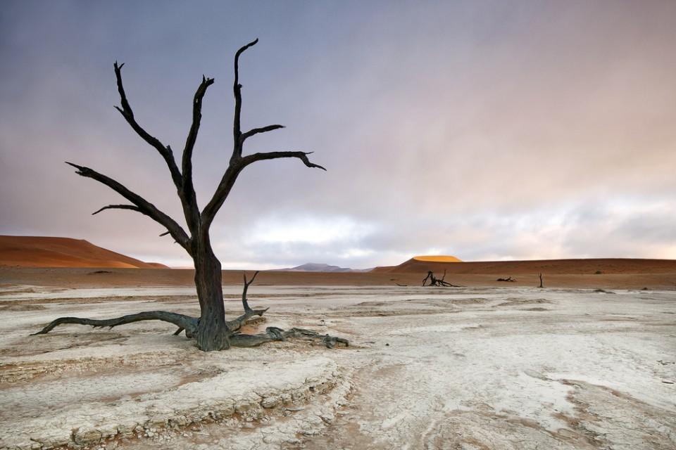 Sossusvlei desert landscape