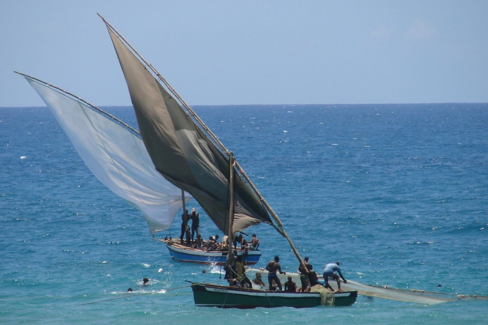 Traditional dhow fishing  by Maurits Vermeulen
