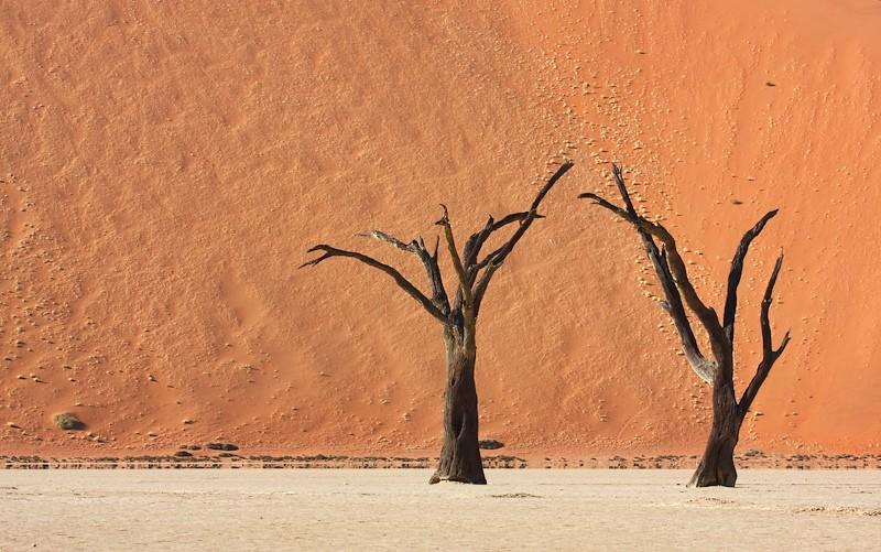 Namib Desert, Namibia  by Angel Hernansaez