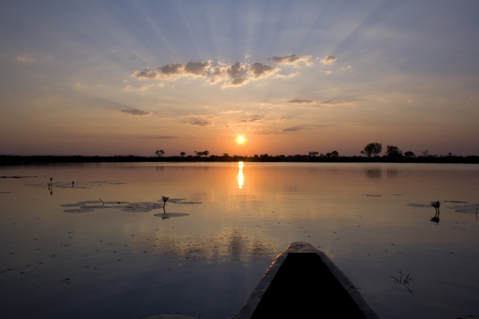 Sunset on the hippo pool  by Lawrence Murray