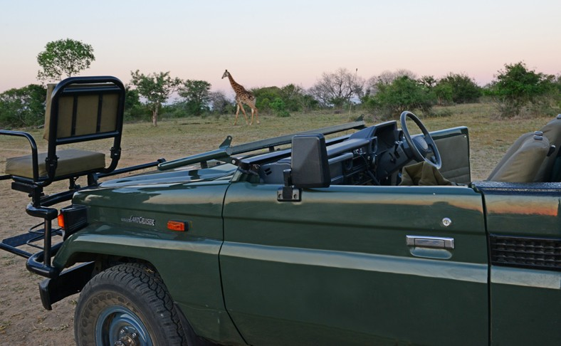 Thornybush safari vehicle