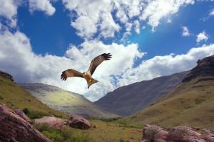 Drakensberg Mountains by Steve Slater