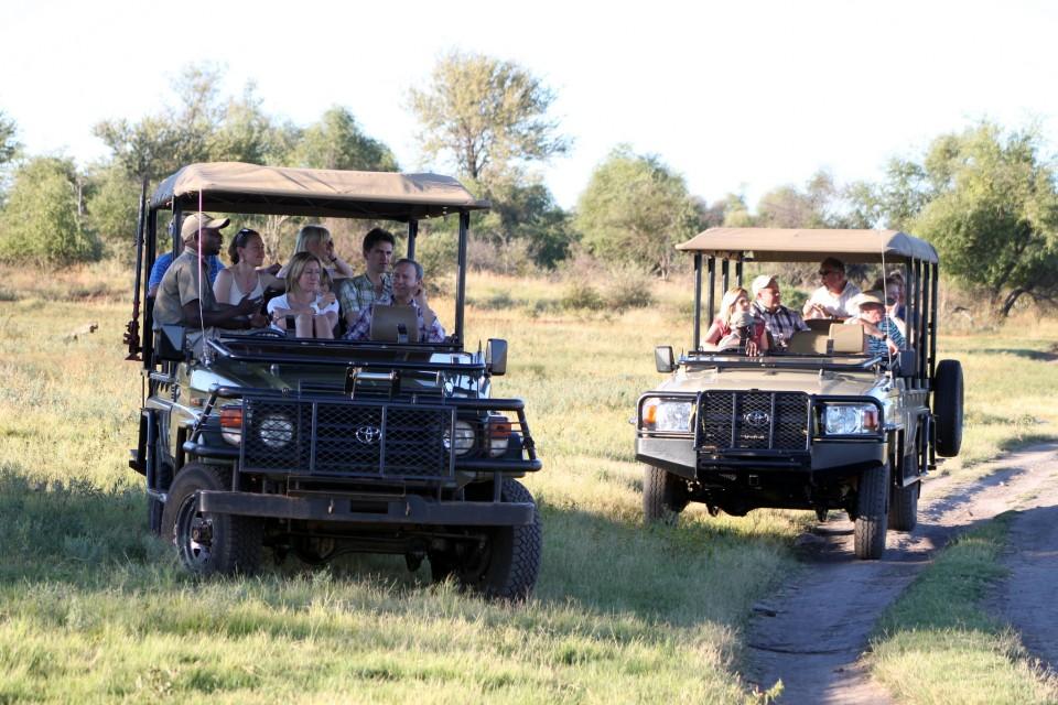 On Safari  by Flowcomm