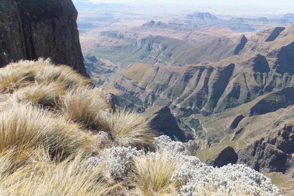 Drakensberg  by Ian Cochrane