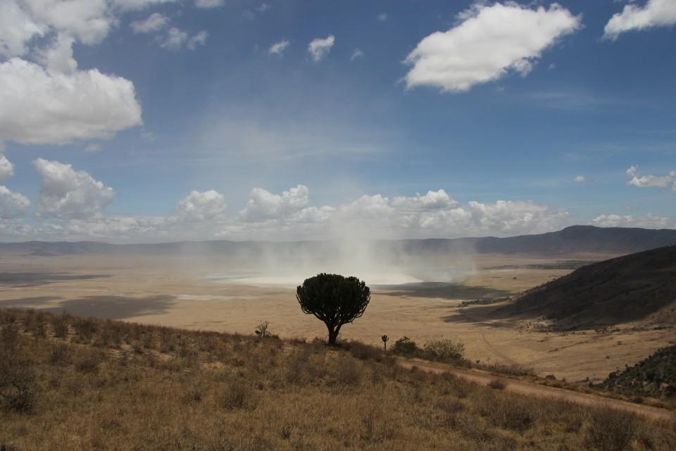 Ngorongoro Crater  by Joe Pyrek