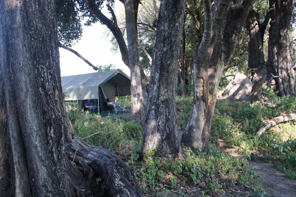 Delta camp