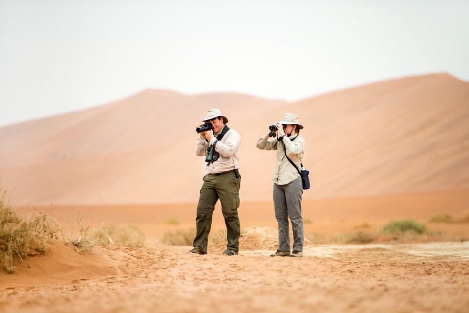 Namib desert (2)
