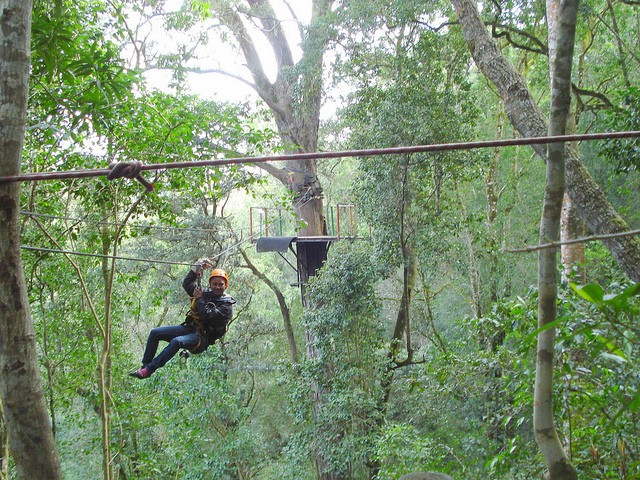 Canopy Tour in Tsitsikamma Forest  by Ian Barbour