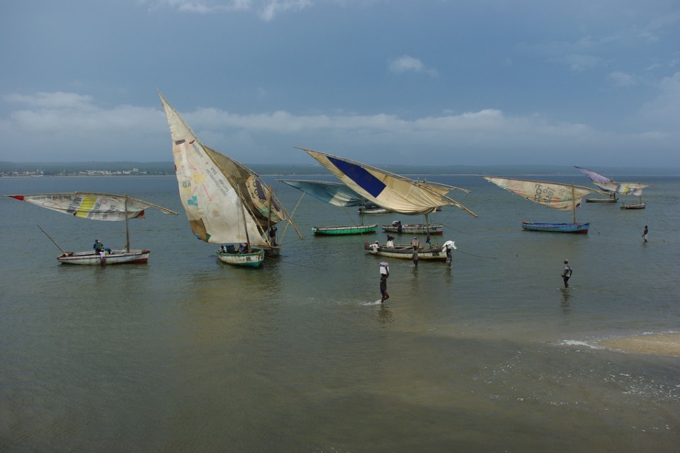 Inhambane dhows  by Richard Stupart
