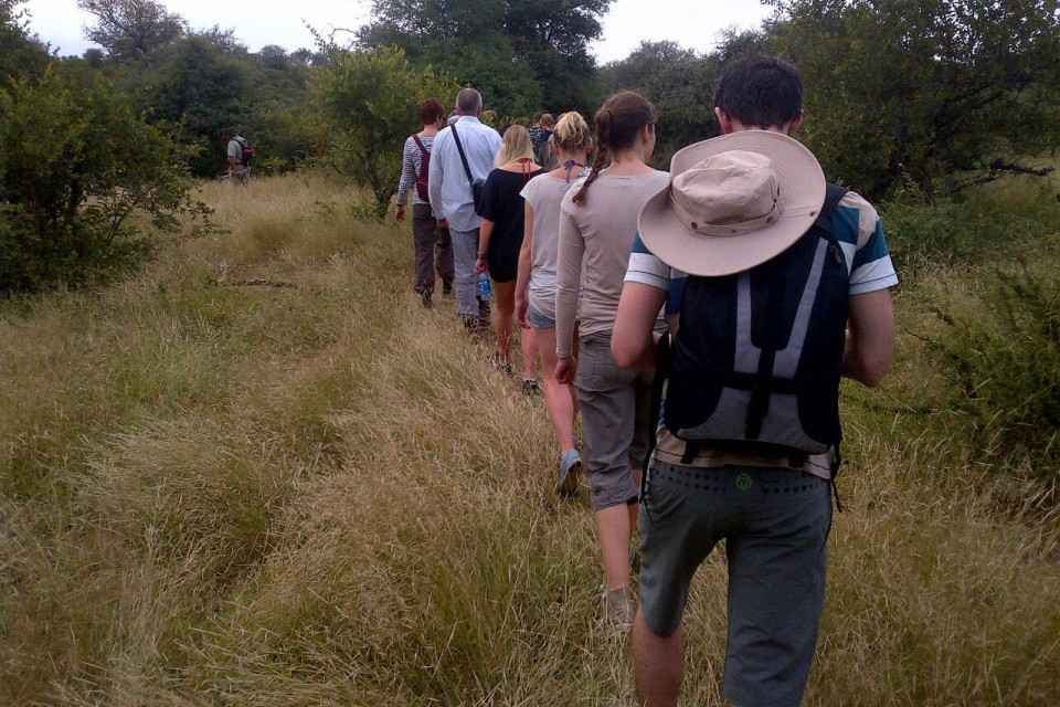 Guided bush walk