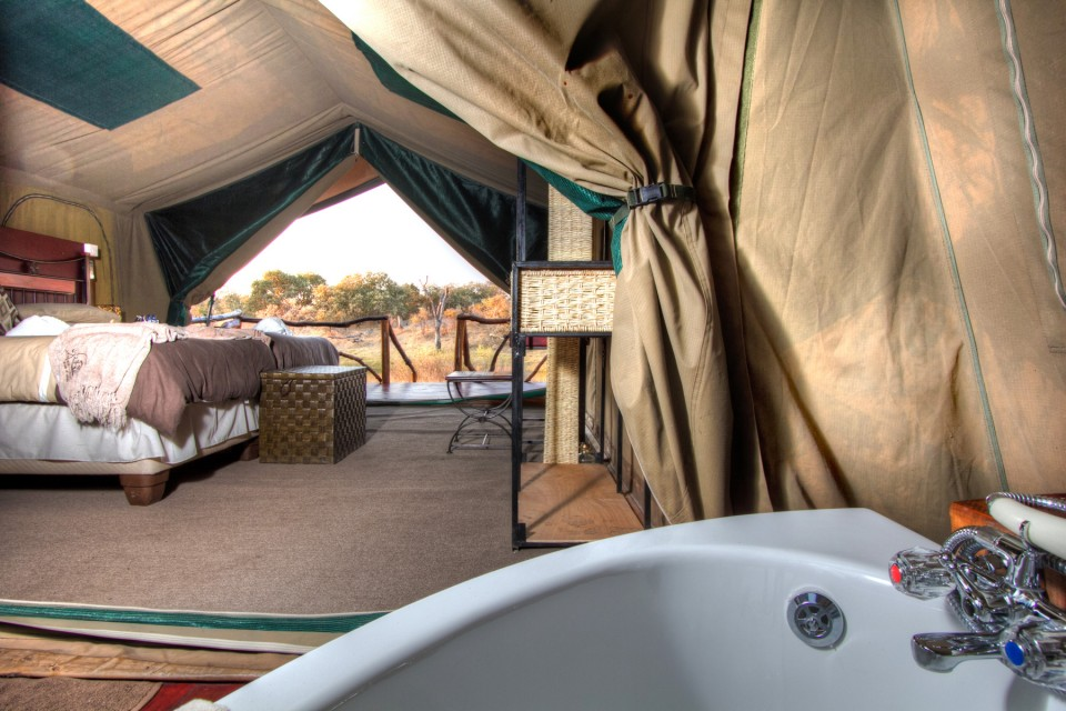 Camp savuti tent inside