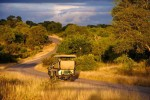 4 Day Kruger Park Budget Camping Safari Package