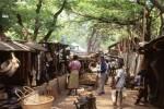 Tanzania to Malawi & Vic Falls Overland Camping Safari